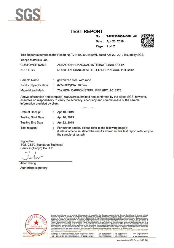 SGS Certificate 1